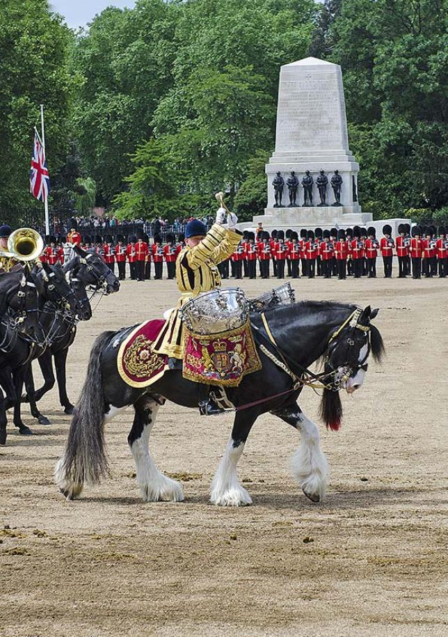 Horse Guards, royalement vôtre