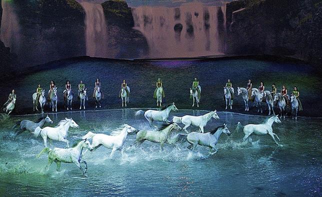 Un jour avec… Benjamin Aillaud, les odyssées d'un centaure
