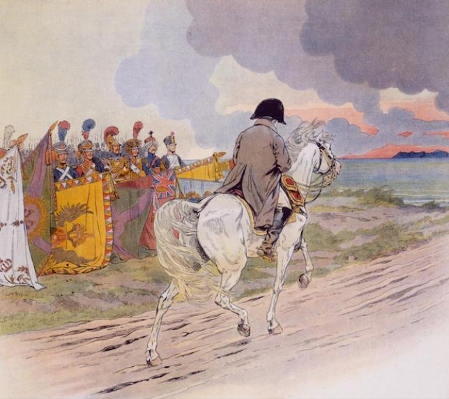 Napoléon, un cavalier et ses chevaux