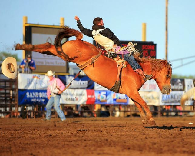 Rodéo, Adrenaline Cowboys
