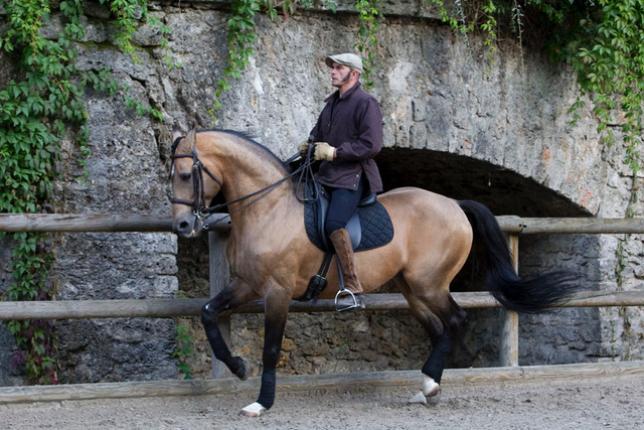 """""""Pour moi, monter un cheval et réciter un poème c'est la même chose"""" - Bartabas"""