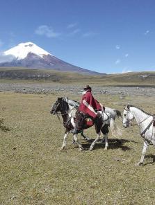 Equateur Galop au pied du volcan enragé