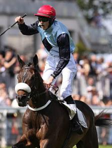 James Reveley, métier : jockey d'obstacles