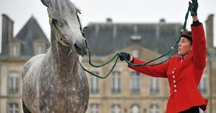 """Jérôme Garcin : """"le bonheur est sur le dos d'un cheval"""""""