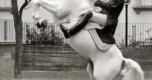 À l'École royale de Jerez Nastasia danse avec les chevaux